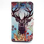 ingekleurde tekening parel graan of patroon pu lederen flip case voor de iPhone 5 / 5s
