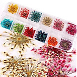 1 Set Dried Flower Petal Stereoscopic Nail Stickers