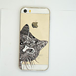 Cat  Pattern Ultra Thin Soft TPU Back Cover Case for iPhone5/5S