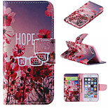 Special Design Novelty Folio Case PU Leather Coloured Drawing or Pattern Holster for iPhone 5/5S