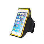 Fulang  Outdoor Sports  Cellphone Armlet Double Stripe Buckle Tieback for Men And Women PS12