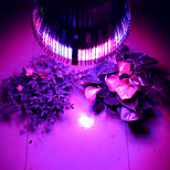 morsen®e27 54w espectro completo llevado crece lámparas de luz llevó la luz cada vez mayor para el sistema hidropónico de plantas con