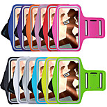 New Sports Arm Band for iPhone 6 / 6S (Assorted Colors)