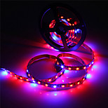 5M MORSEN® 5050 Waterproof LED Flexible Strip Tape Light 4 Red 1 Blue Greenhouse Hydroponic Plant Growing Lamp (12V)