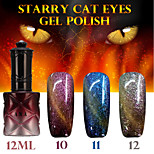 1PCS ANA Starry Cat Eyes Color Gel 12ml 12Colors Long Lasting Nail Polish 10-12