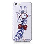 Gentleman Glasses Giraffe Pattern Transparent TPU Soft Case for iPhone5c