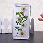 The New Embedded Herbarium Small White Flowers Green Pattern TPU Material Phone Case for iPhone 6 / 6S