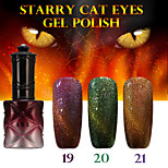 1PCS ANA Starry Cat Eyes Color Gel 12ml 24Colors Long Lasting Nail Polish 19-21