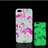 Flamingomuster im Dunkeln leuchten Hartplastikhülle für iPhone 5 für iPhone 5s Fall