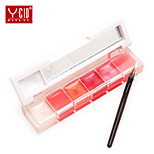 1Pcs Authentic French YCID Stanley Moisturizing Lip Freeze 6 Colors Combination Moisturizing Lip Gloss Lip Wrinkles Fade