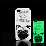 motif chien de roquet lueur dans la couverture arrière en plastique dur noir pour iPhone 5 pour iphone 5s cas