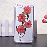 The New Embedded Herbarium Pink Cherry Blossoms Green Pattern TPU Material Phone Case for iPhone 6 / 6S