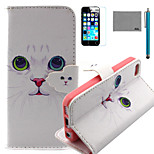 LEXY® White Cat Pattern PU Full Body Leather Case with Screen Protector and Stylus for iPhone 5C
