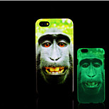 Chimpanzee Pattern Glow in the Dark Hard Plastic Back Cover for iPhone 5 for iPhone 5s Case