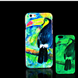 Toucan Pattern Glow in the Dark Hard Plastic Back Cover for iPhone 6 for iPhone 6s Case