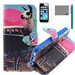 LEXY® Antelope Bus Pattern PU Full Body Leather Case with Screen Protector and Stylus for iPhone 5C