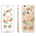 Marigolds  Pattern Transparent TPU Material Phone Case for iPhone 6/ 6S