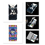 The Cat's Eye Cartoon Pattern PU Leather Full Body Case for iPhone 4/4S