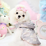 Dog Hoodie Pink Spring/Fall Fashion