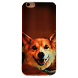 Dog Pattern TPU Soft Case Phone Case iPhone 6/6S
