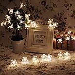king ro 40led licht accu bloesem vakantie outdoor waterdichte snaar licht (kl0018-rgb, wit, warm wit)