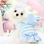 Dog Hoodie Blue / Pink Winter Stripe Fashion