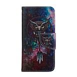 dibujo coloreado funda móvil de cuero de la PU incluyendo un anti-polvo enchufe de una aguja para el iphone 5 / 5s (color al azar)