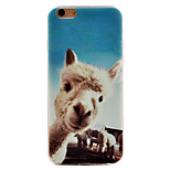 Alpaca Pattern TPU Soft Case Phone Case iPhone 6/6S