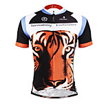 PaladinSport Men 's Short Sleeve Cycling Jersey DX623 tiger 100% Polyester