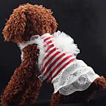 Classic Stripes Lace Pet Dress