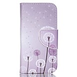 Patterned Leather Card Holder Case for iPod Touch 5/6 with Stand - Flying Dandelion