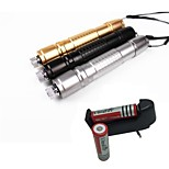 LS1662 High Quality 10mw 305 Laser Pointer  Burning Laser Presenter Green Laser Pointer +18650 Battery+EU Charger