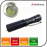 Portable Mini LED Flashlights/Torch 3 Mode Waterproof / Small Size Cree LED AA Battery Camping/Hiking/Caving /