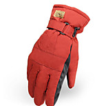 Fulang New Ski Gloves Outdoor Cycling Warm Gloves GE43