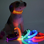 Fashion Leopard Print LED Pet Collar