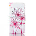 Dandelion Pattern PU Leather Case with Card Slot and Stand for iPhone SE/5S/5