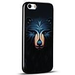 Embossed Cute Bear Ultra Thin Protective Back Cover Soft iPhone Case for iPhone 5S/iPhone SE/iPhone 5