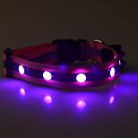 Fashion LED Pet Collar