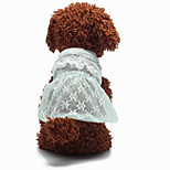 Charming Lace Ruffles Pet Dress