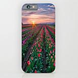 extrañas flores florecen caja de la PC del teléfono del modelo cubierta de la caja difícilmente para el iPhone5 / 5s