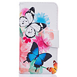 Two Butterflies Pattern Card Phone Cover For LG K7/K10