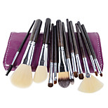 Professional Makeup Brush Set 12pcs Beauty Tools Kit with Case