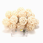 BRELONG 20-LED 2m Warm White Christmas Holiday Decoration String Light (DC4.5V)