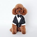 Dog Tie / Shirt Black Summer Britsh Wedding / Holiday-Lovoyager