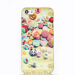 Colorful Button ABS Hard Back Case for iPhone 5/5S/SE