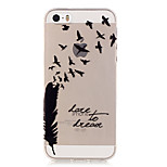 Transparent Colored Feather Pattern TPU Soft Case Phone Case For iPhone 5/5S/SE