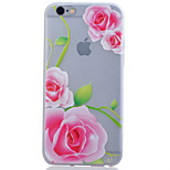 Back Cover Glow in the Dark Translucent TPU SoftApple iPhone SE/5s/5