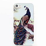 Peacock Pattern Glitter Shine TPU Soft Back Case for iPhone 5/5S/SE