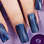 Ekbas Cat Eye Blue Matte Nail Glue 16ML Nail Polish