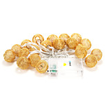 BRELONG 20-LED 2m Warm White Christmas Holiday Outdoor Decoration String Light (DC4.5V)